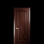 Дверь Амата (глухая)